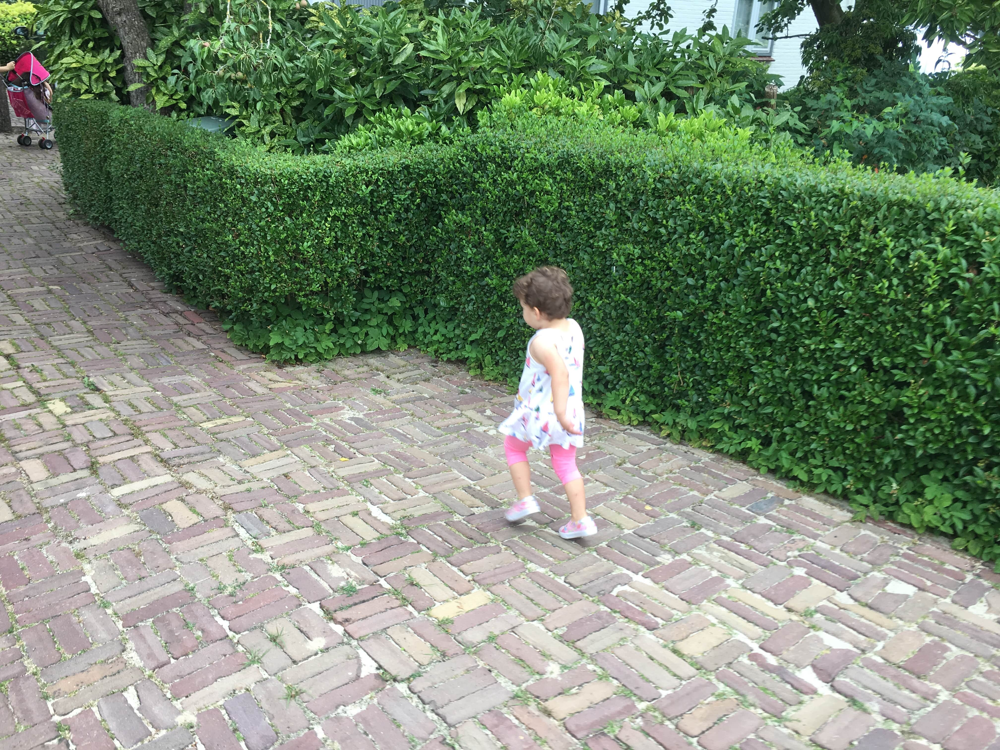 Anabella walking on our driveway